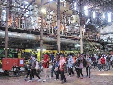 Aktivitas wisata di pabrik tebu
