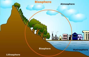 biosphere-illustration