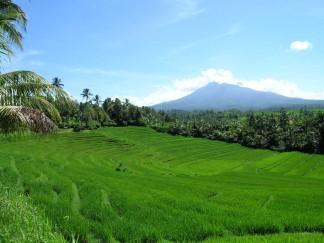 pengertian-sumber-daya-alam-indonesia