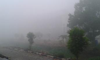 Kabut Asap di GIBS